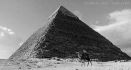 2010.12.30 Egypt