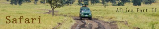 #13_africa_2_safari